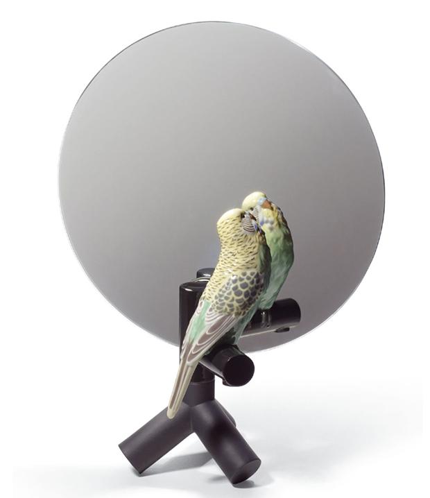 36_parrot-vanity